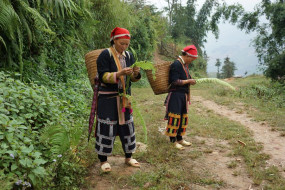 vietnam sapa women