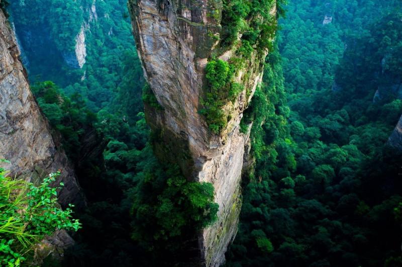 """""""По следам Аватара"""": путешествие в самый космический природный парк Китая"""