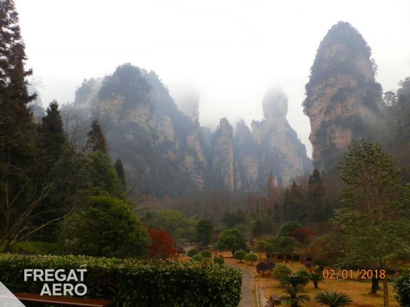 Золотой хлыст, Китай